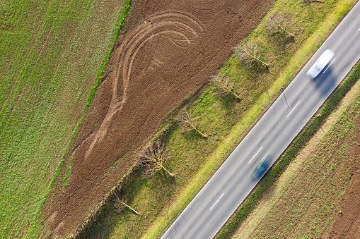 Deforestation「Aerial view of felled trees」:スマホ壁紙(10)
