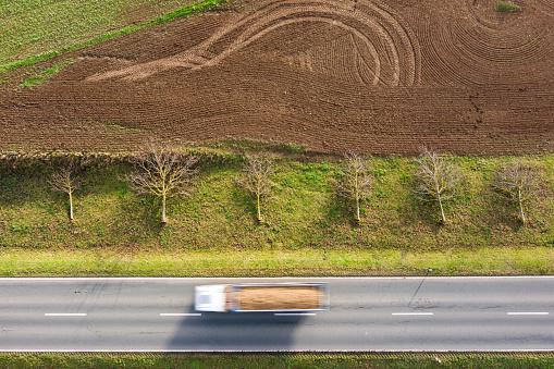 Deforestation「Aerial view of felled trees」:スマホ壁紙(12)