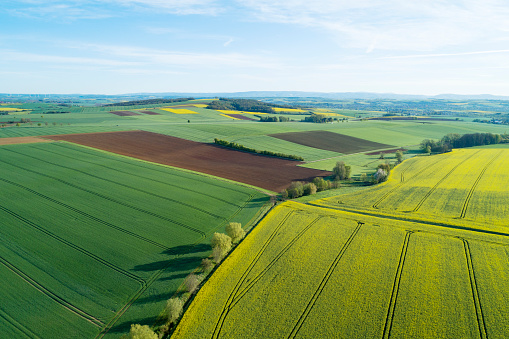 Patchwork Landscape「Aerial View of landscape with agricultural fields (yellow rape field) and trees, springtime. Franconia, Bavaria, Germany.」:スマホ壁紙(1)