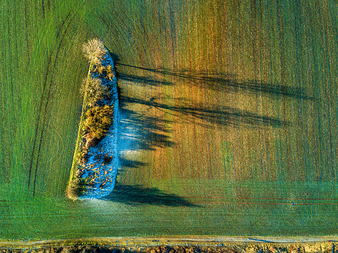 Grove「Aerial view of landscape with trees and field in winter」:スマホ壁紙(7)