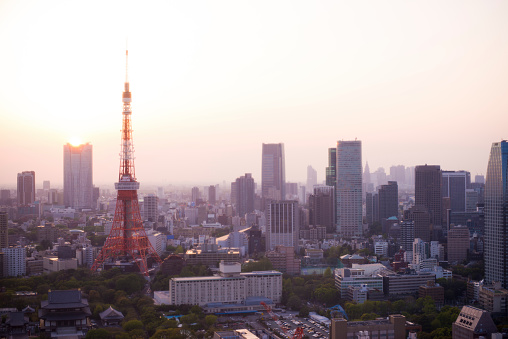 Japan「上空から見た東京」:スマホ壁紙(11)