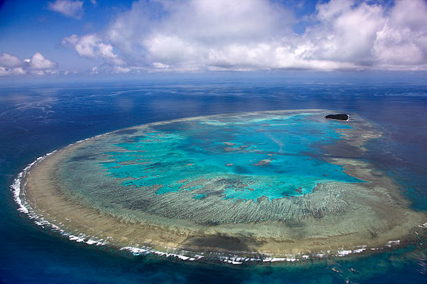 Aerial view of Lady Musgrave Island, Great Barrier Reef, Queensland, Australia:スマホ壁紙(壁紙.com)