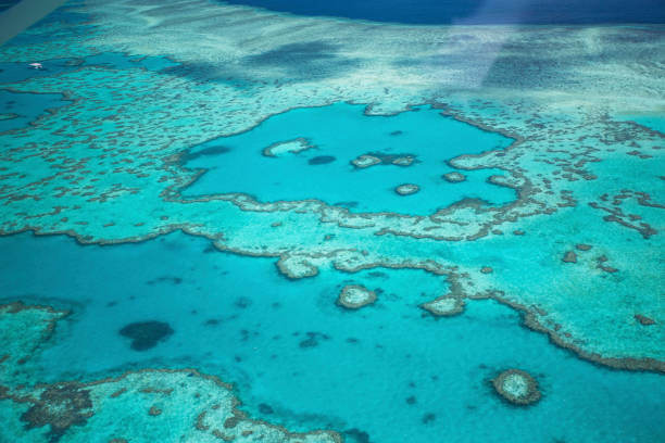 Aerial views over the Whitsunday Island chain and the Great Barrier Reef.:スマホ壁紙(壁紙.com)