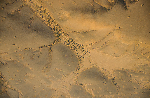 Lost「Aerial view of the tree dotted Dune Alley. Sossusvlei,  Namib-Naukluft National Park, Namibia」:スマホ壁紙(1)