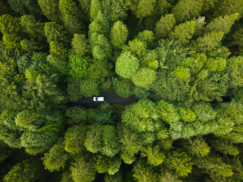 Lumber Industry「Aerial view of a pine forest with a white van driving through a pathway, Roscommon, Ireland」:スマホ壁紙(15)
