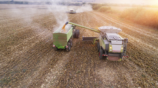 Planting「Aerial View of a Combine Harvester Harvesting the Agricultiral Fierld at Sunset and Filling the Crop in a Tractor. Summertime. Agricultural Equipment in Cultivated Land」:スマホ壁紙(0)