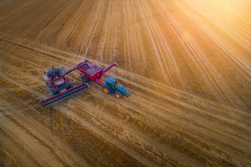 Harvesting「Aerial View of a Combine Harvester Harvesting the Agricultiral Fierld at Sunset. Summertime. Agricultural Equipment in Cultivated Land」:スマホ壁紙(4)