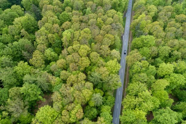 Aerial view of road with car through forest, springtime. Steigerwald, Franconia, Bavaria, Germany.:スマホ壁紙(壁紙.com)