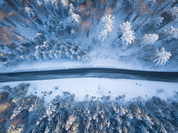Aerial view of a road through winter landscape, Gaisberg, Salzburg, Austria:スマホ壁紙(壁紙.com)