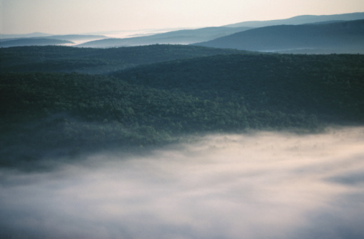 Growth「Aerial view of fog over wilderness in Quebec, Canada」:スマホ壁紙(2)
