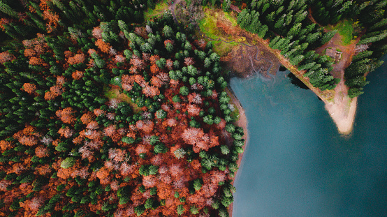 Boreal Forest「Aerial view of beautiful mountain lake and colorful forest during autumn season」:スマホ壁紙(13)