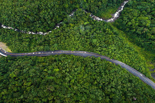 Rainforest「Aerial View of a road on a forest」:スマホ壁紙(5)