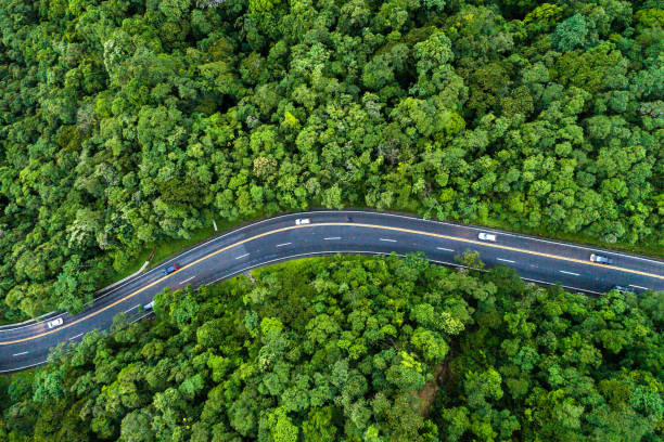 Aerial View of a road on a forest:スマホ壁紙(壁紙.com)