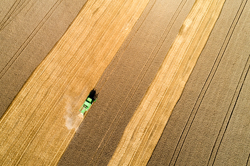 Harvesting「Aerial view of combine harvester harvesting wheat in field」:スマホ壁紙(0)