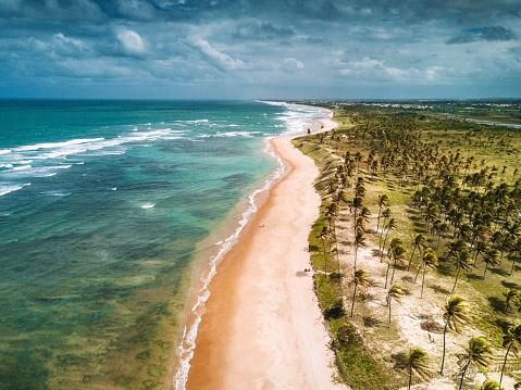 葉・植物「ブラジルの楽園ビーチの空撮」:スマホ壁紙(7)