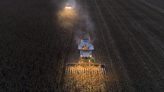 Harvesting「Aerial View of a Group of Combine Harvesters Harvesting the Agricultiral Fierld After Sunset. Summertime. Agricultural Equipment in Cultivated Land. Nighttime. Working Late.」:スマホ壁紙(15)