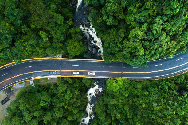 Aerial View of road in a forest:スマホ壁紙(壁紙.com)