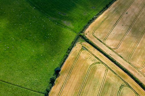 Northeastern England「Aerial view of hedgerows in Northumbria」:スマホ壁紙(19)
