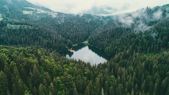 Carpathian Mountain Range「Aerial view of Synevir lake in the  Carpathian Mountains in Ukraine」:スマホ壁紙(18)