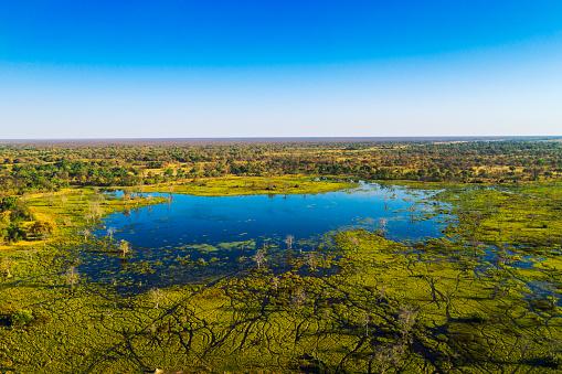 Okavango Delta「Aerial view of Okavango Delta, Botswana, Africa」:スマホ壁紙(10)