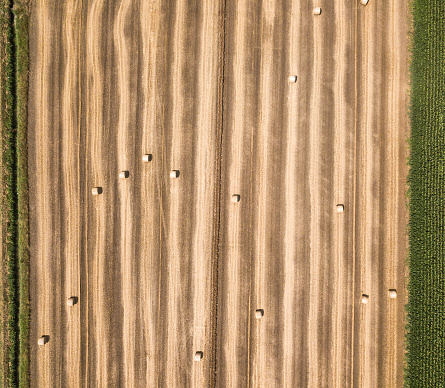 Harvesting「Aerial view of hay bales」:スマホ壁紙(13)