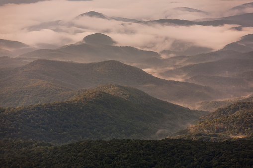 Rolling Landscape「Aerial view of forested hills and Grandfather Mountain shrouded in morning fog, Linville, North Carolina, USA」:スマホ壁紙(15)
