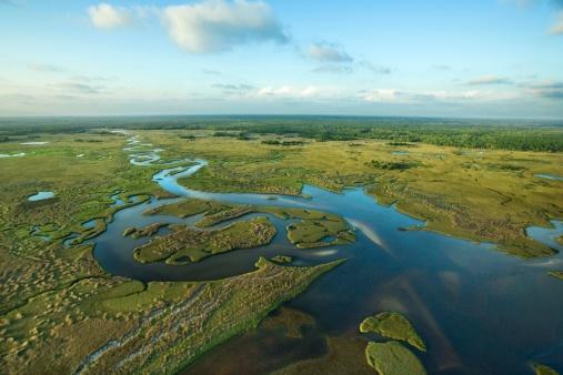 Southern USA「Aerial view of Florida Everglades」:スマホ壁紙(15)