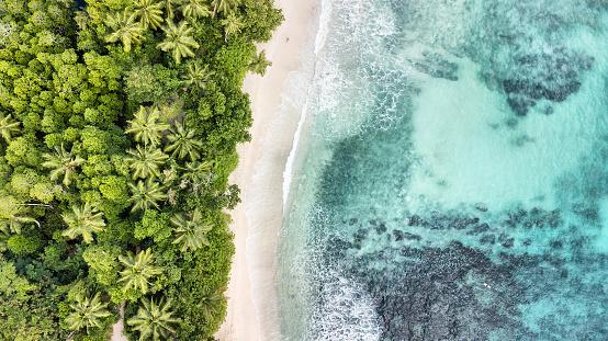 自然の景観「アンス タカマカ - マヘ島 - セイシェルの航空写真」:スマホ壁紙(19)