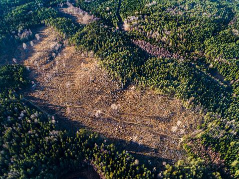 Deforestation「Aerial View over Deforestation」:スマホ壁紙(14)