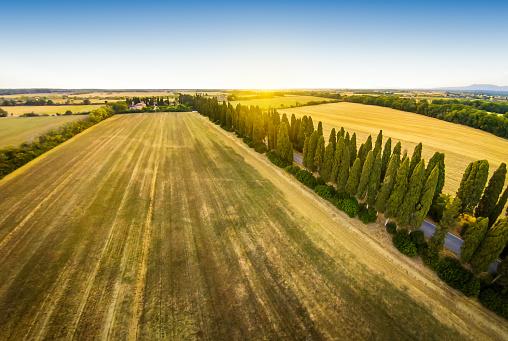 Boulevard「aerial view of viale dei cipresi cypresses tree road in Bolgheri. Tuscany」:スマホ壁紙(5)