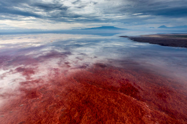 Aerial View of Lake Natron, Tanzania, Africa:スマホ壁紙(壁紙.com)