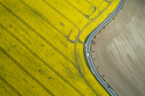 Blossom「Aerial view of rural road with traffic and oilseed rape field, springtime. Saale-Orla-Kreis, Thuringia, Schleiz, Germany.」:スマホ壁紙(5)