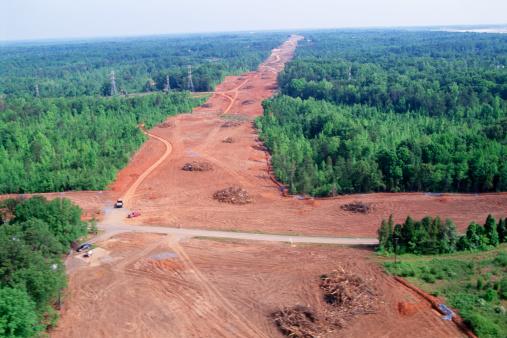 Deforestation「Aerial view of clear cutting forestry」:スマホ壁紙(15)