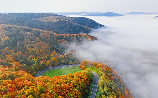 Hairpin Curve「Aerial view of autumn forest road in morning fog. Mosele Valley, Germany.」:スマホ壁紙(12)