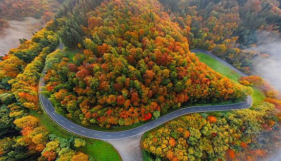 Hairpin Curve「Aerial view of autumn forest road in morning fog. Mosele Valley, Germany.」:スマホ壁紙(8)