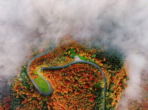 Steep「Aerial view of autumn forest road in morning fog. Mosele Valley, Germany.」:スマホ壁紙(5)
