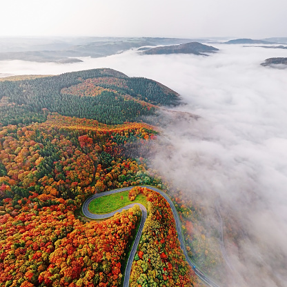 Steep「Aerial view of autumn forest road go down into morning fog. Mosele Valley, Germany.」:スマホ壁紙(16)