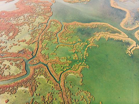 Izmir「Aerial View of Wetland, Izmir」:スマホ壁紙(16)