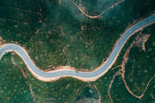 Sri Lanka「Aerial view on tea plantation in Sri Lanka」:スマホ壁紙(15)