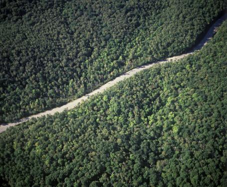 Adirondack Mountains「Aerial view of mountain road, Lake Placid region, Adirondack Mountains, New York, USA」:スマホ壁紙(18)