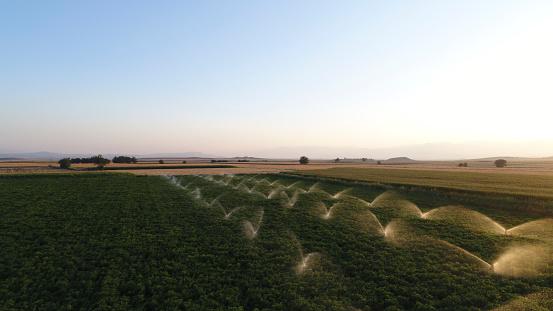 Sprinkler「Aerial view of organic farming」:スマホ壁紙(11)