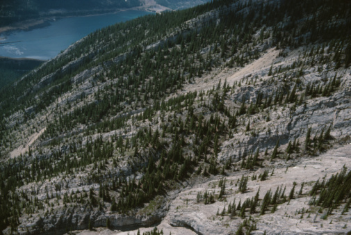 Mt Assiniboine Provincial Park「Aerial view of wilderness hillside, British Columbia, Canada」:スマホ壁紙(13)