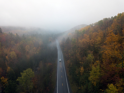 Adirondack Forest Preserve「Aerial view of a road with autumn leaves changing」:スマホ壁紙(6)