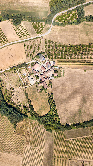 Piedmont - Italy「Aerial view of a vineyard in Piedmont - Italy」:スマホ壁紙(16)