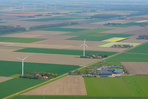 Netherlands「Aerial view on wind turbines and fields of tulip flowers」:スマホ壁紙(11)