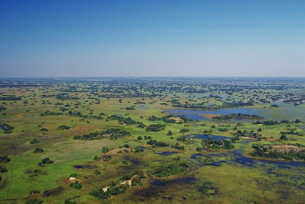 Botswana「Okavango Delta, Botswana, Africa」:写真・画像(9)[壁紙.com]