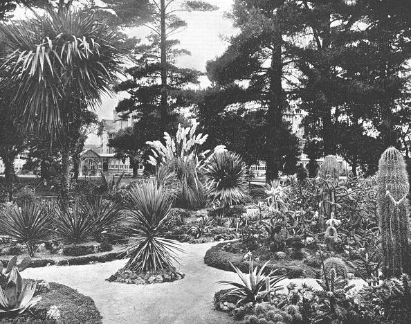 Arizona「Arizona Garden」:写真・画像(17)[壁紙.com]