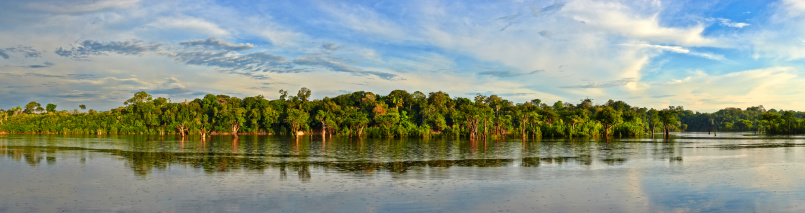Amazon Rainforest「Amazon River, Amazonas, Brazil」:スマホ壁紙(8)