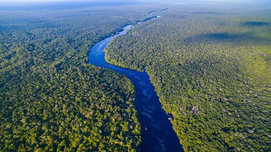 アマゾン熱帯雨林「ブラジルのアマゾン川」:スマホ壁紙(1)