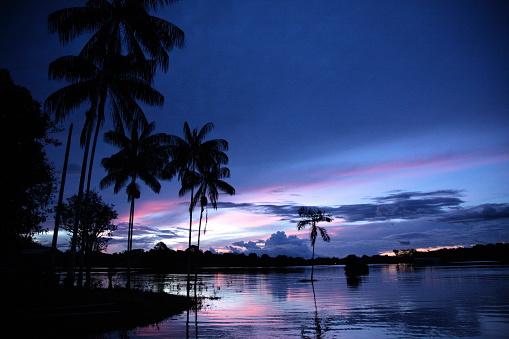 Amazon Rainforest「Amazon river sunset」:スマホ壁紙(18)